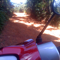 back roads in Phuket with a Honda Wave
