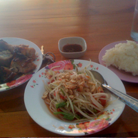 sticky rice, chicken and papaya salad