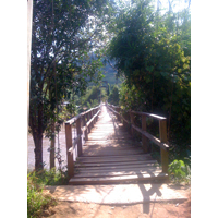 Wooden bridge acroos river in Chiang Rai